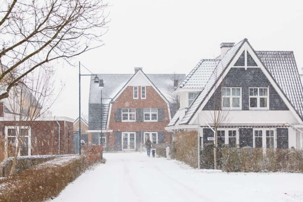 Winter Wonder Wilgenrijk09