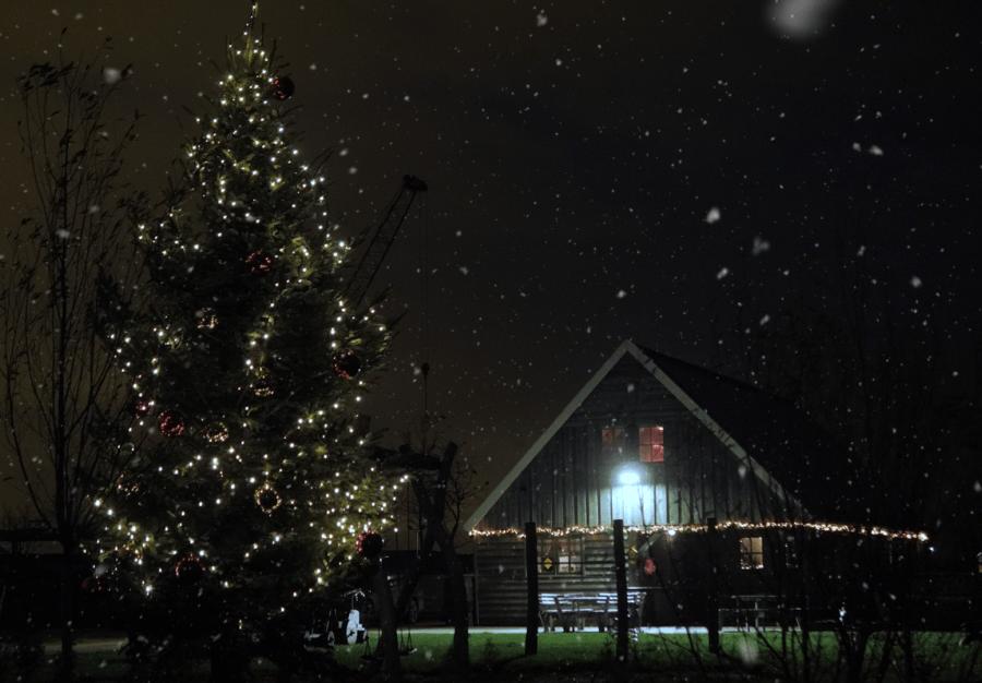 Wilgenrijk kerstfilm V2huizen 00 00 05 09 Still021