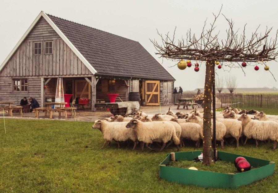 Wilgenrijk Kerststal Kerstmarkt