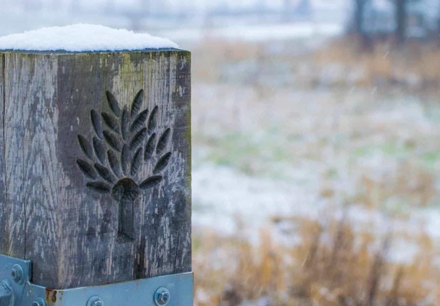 Winter In Wilgenrijk